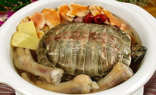 常煲土茯苓草龟汤 可清热祛湿解毒润肤【棱人】